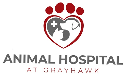 Animal Hospital at Grayhawk